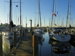 C350s at Tampa Yacht Squadron